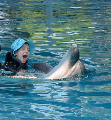 medical dolphin therapy antalya
